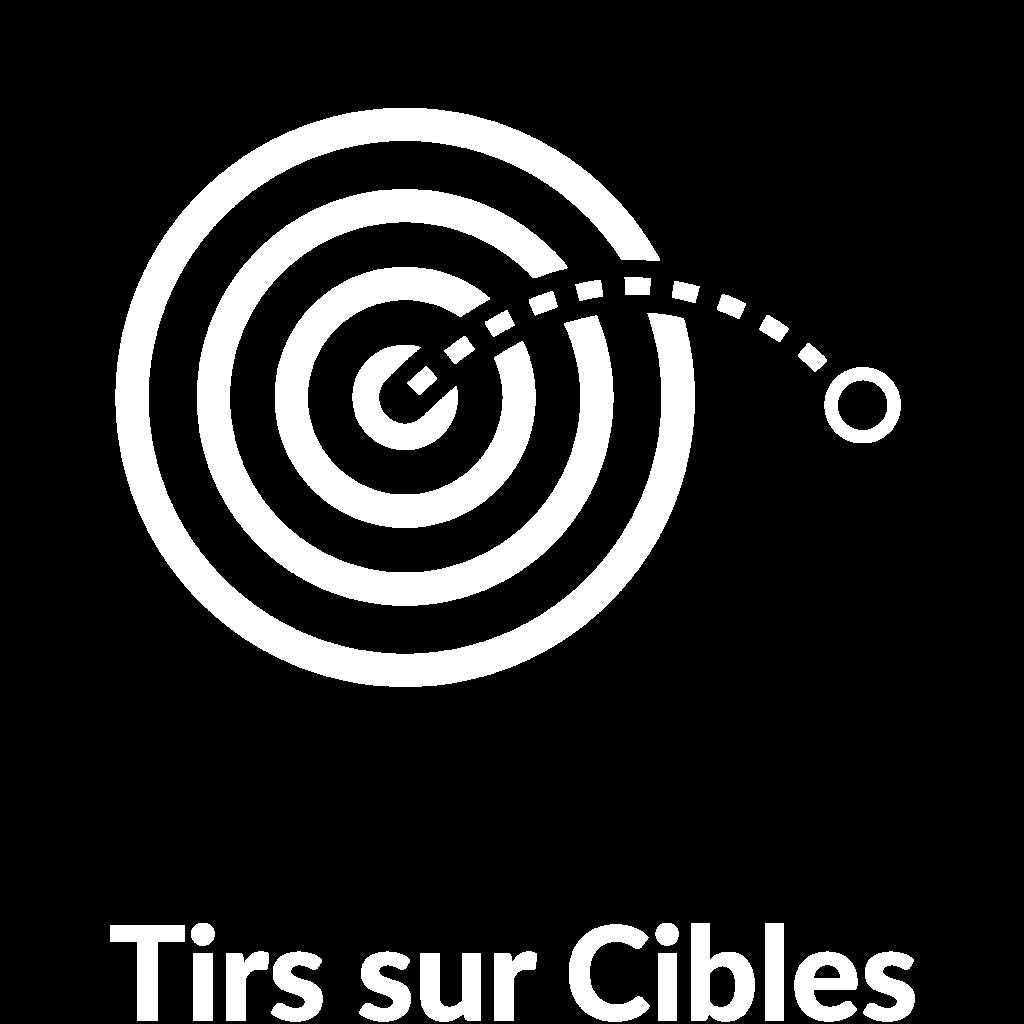 sportgame-picto-tir-sur-cible-lovagame